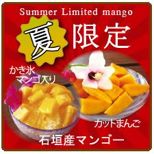 竹富島で会いましょうの限定商品 カットマンゴー かき氷マンゴー